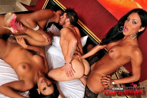 Latin shemale orgy